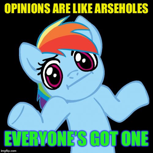 Pony Shrugs Meme | OPINIONS ARE LIKE ARSEHOLES EVERYONE'S GOT ONE | image tagged in memes,pony shrugs | made w/ Imgflip meme maker