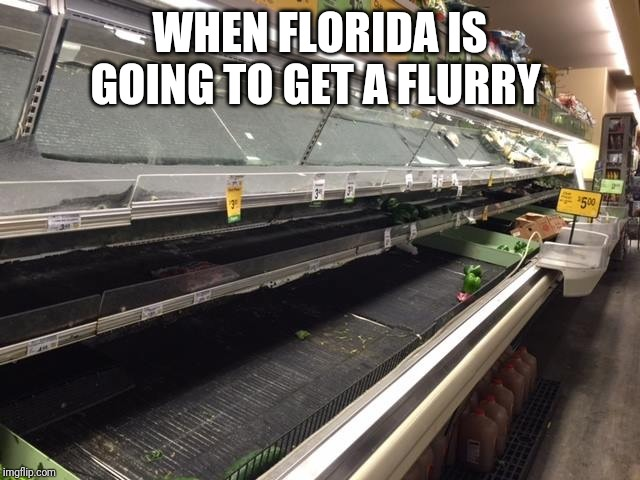 WHEN FLORIDA IS GOING TO GET A FLURRY | image tagged in empty grocery store | made w/ Imgflip meme maker