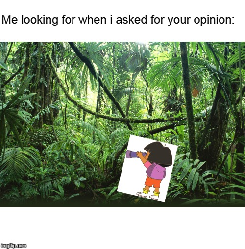 Jungle | Me looking for when i asked for your opinion: | image tagged in jungle | made w/ Imgflip meme maker