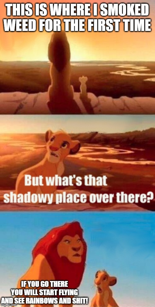 Simba Shadowy Place Meme | THIS IS WHERE I SMOKED WEED FOR THE FIRST TIME IF YOU GO THERE YOU WILL START FLYING AND SEE RAINBOWS AND SHIT! | image tagged in memes,simba shadowy place | made w/ Imgflip meme maker