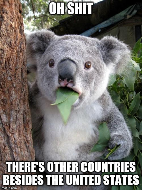 Right-Wingers in a nutshell | OH SHIT THERE'S OTHER COUNTRIES BESIDES THE UNITED STATES | image tagged in memes,surprised koala,america,united states,right-wing,right wing | made w/ Imgflip meme maker