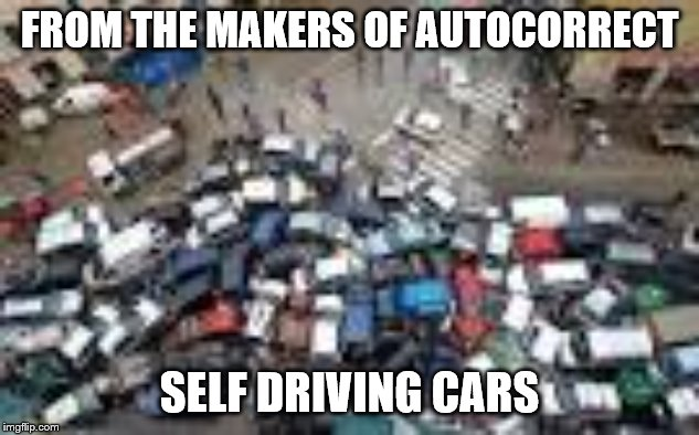 What could possibly go wrong? Can you find Bad Luck Brian? | FROM THE MAKERS OF AUTOCORRECT SELF DRIVING CARS | image tagged in car crash,autocorrect,funny memes,election 2020,cute puppies | made w/ Imgflip meme maker