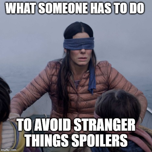 Bird Box | WHAT SOMEONE HAS TO DO TO AVOID STRANGER THINGS SPOILERS | image tagged in memes,bird box | made w/ Imgflip meme maker