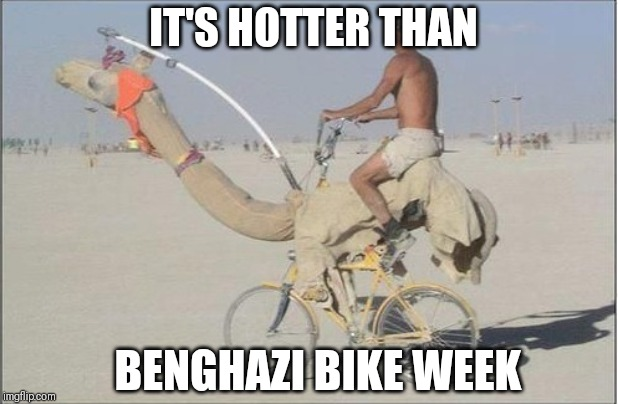 Camel bike | IT'S HOTTER THAN BENGHAZI BIKE WEEK | image tagged in camel bike | made w/ Imgflip meme maker