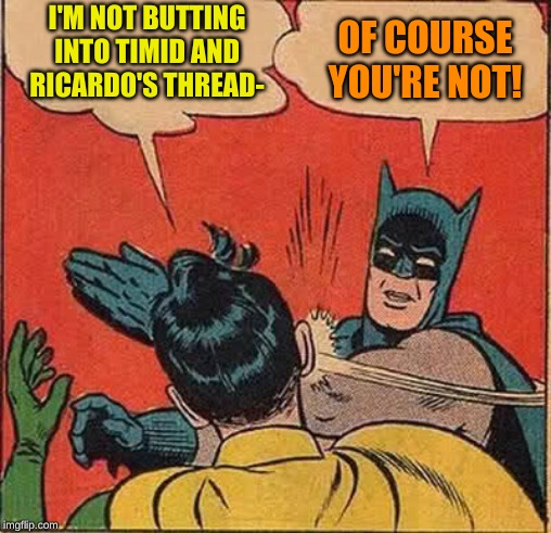 Batman Slapping Robin Meme | I'M NOT BUTTING INTO TIMID AND RICARDO'S THREAD- OF COURSE YOU'RE NOT! | image tagged in memes,batman slapping robin | made w/ Imgflip meme maker