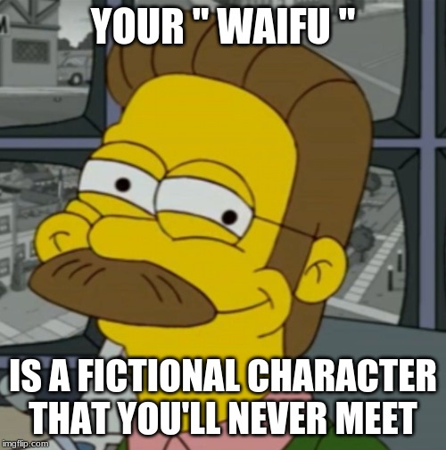 "YOUR "" WAIFU "" IS A FICTIONAL CHARACTER THAT YOU'LL NEVER MEET 