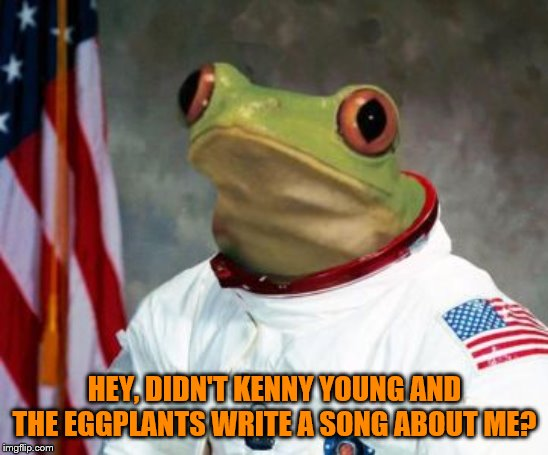 Space Frugs... or is it Frog? | HEY, DIDN'T KENNY YOUNG AND THE EGGPLANTS WRITE A SONG ABOUT ME? | image tagged in space frugs,space frog,kenny young and the eggplants | made w/ Imgflip meme maker