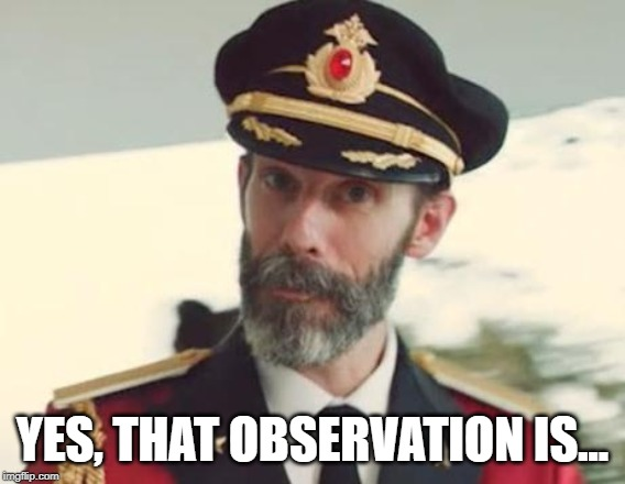 Captain Obvious | YES, THAT OBSERVATION IS... | image tagged in captain obvious | made w/ Imgflip meme maker