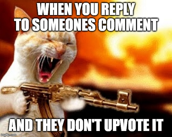 pure rage | WHEN YOU REPLY TO SOMEONES COMMENT AND THEY DON'T UPVOTE IT | image tagged in machine gun cat | made w/ Imgflip meme maker
