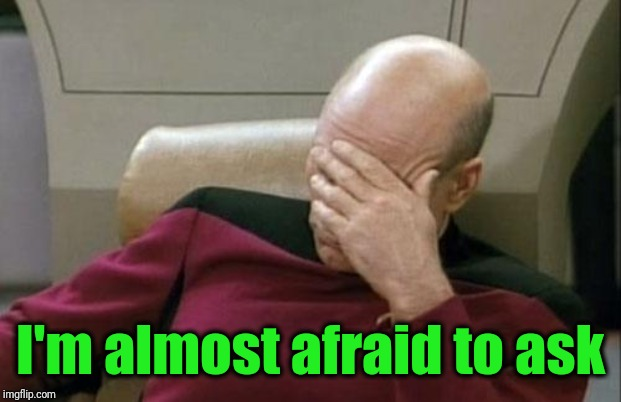 Captain Picard Facepalm Meme | I'm almost afraid to ask | image tagged in memes,captain picard facepalm | made w/ Imgflip meme maker