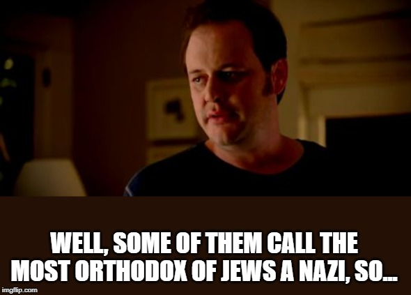 Well he's a girl, so... | WELL, SOME OF THEM CALL THE MOST ORTHODOX OF JEWS A NAZI, SO... | image tagged in well he's a girl so | made w/ Imgflip meme maker