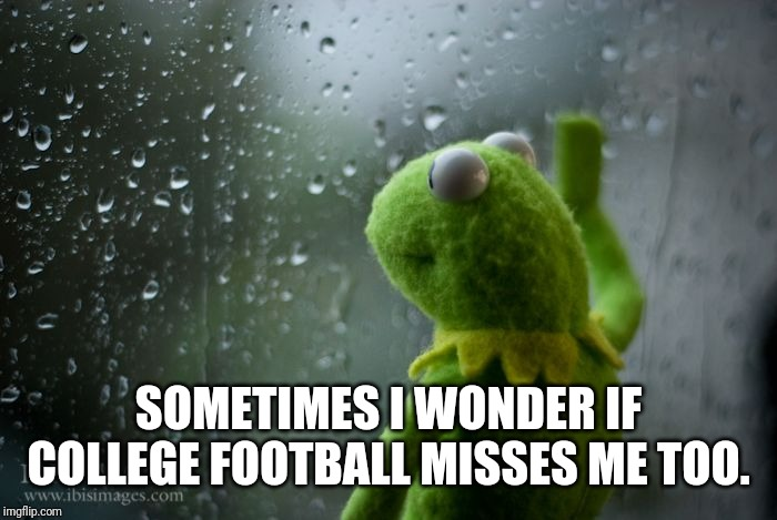 44 days to go... | SOMETIMES I WONDER IF COLLEGE FOOTBALL MISSES ME TOO. | image tagged in kermit window,sports,football | made w/ Imgflip meme maker