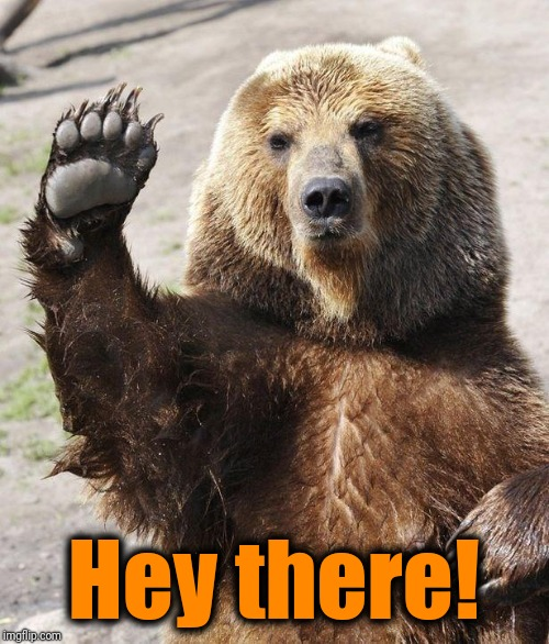 Hello bear | Hey there! | image tagged in hello bear | made w/ Imgflip meme maker
