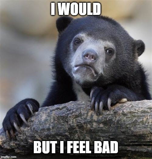 Confession Bear Meme | I WOULD BUT I FEEL BAD | image tagged in memes,confession bear | made w/ Imgflip meme maker