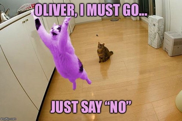 "RayCat save the world | OLIVER, I MUST GO... JUST SAY ""NO"" 