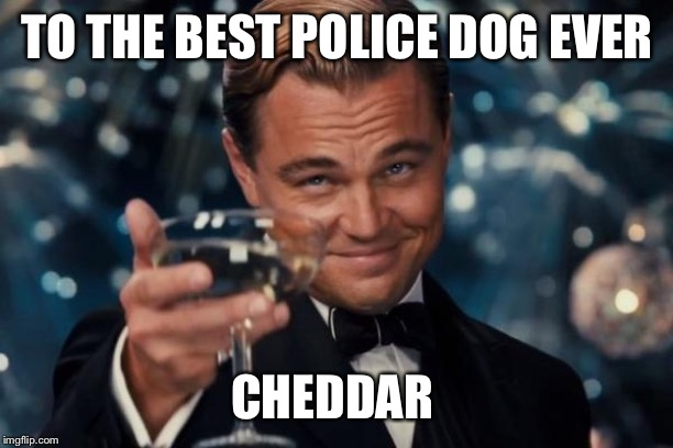 Leonardo Dicaprio Cheers Meme | TO THE BEST POLICE DOG EVER CHEDDAR | image tagged in memes,leonardo dicaprio cheers | made w/ Imgflip meme maker