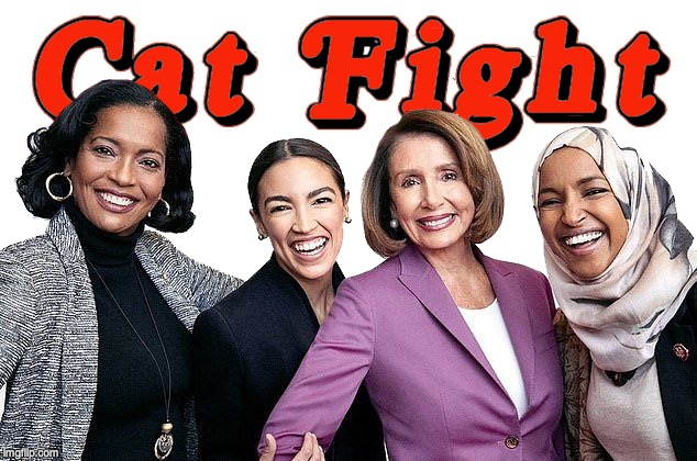 image tagged in pelosi,aoc,democrats | made w/ Imgflip meme maker