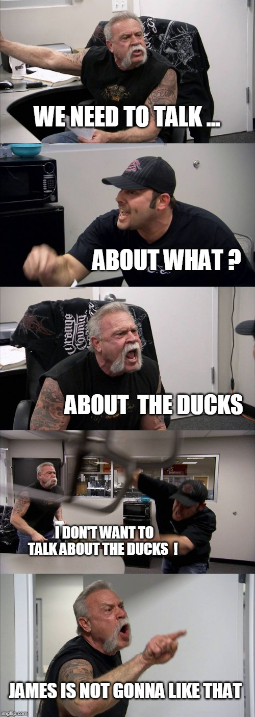 Lets talk about the ducks.... | WE NEED TO TALK ... ABOUT WHAT ? ABOUT  THE DUCKS I DON'T WANT TO TALK ABOUT THE DUCKS  ! JAMES IS NOT GONNA LIKE THAT | image tagged in memes,american chopper argument,ducks,talk,duck | made w/ Imgflip meme maker