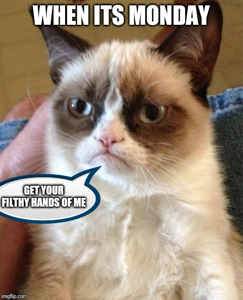 Grumpy Cat Meme | WHEN ITS MONDAY GET YOUR FILTHY HANDS OF ME | image tagged in memes,grumpy cat | made w/ Imgflip meme maker