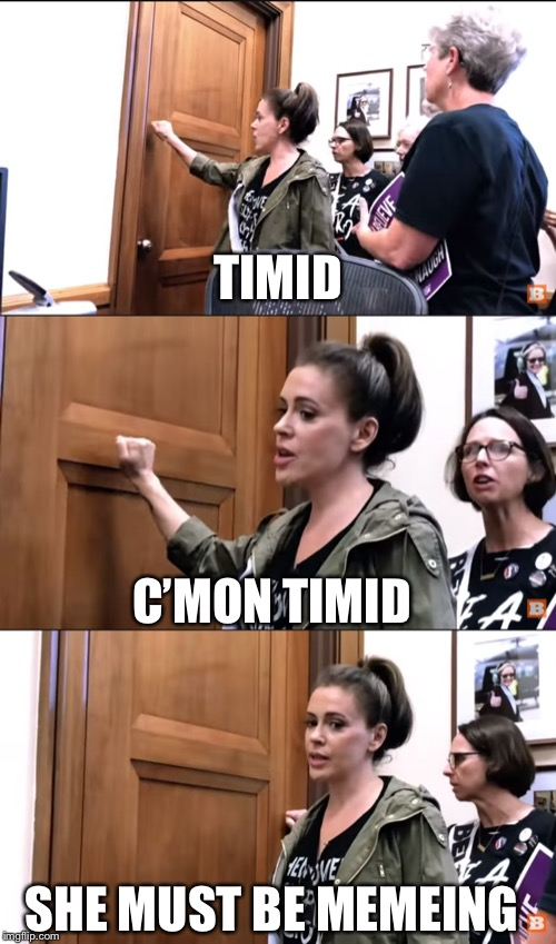 Knock-knock-ilano | TIMID C'MON TIMID SHE MUST BE MEMEING | image tagged in knock-knock-ilano | made w/ Imgflip meme maker