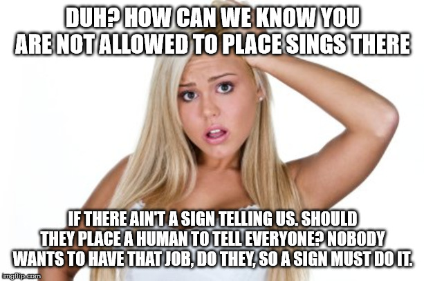 Dumb Blonde | DUH? HOW CAN WE KNOW YOU ARE NOT ALLOWED TO PLACE SINGS THERE IF THERE AIN'T A SIGN TELLING US. SHOULD THEY PLACE A HUMAN TO TELL EVERYONE?  | image tagged in dumb blonde | made w/ Imgflip meme maker