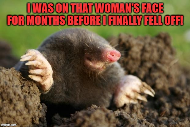 National Mole Day | I WAS ON THAT WOMAN'S FACE FOR MONTHS BEFORE I FINALLY FELL OFF! | image tagged in national mole day | made w/ Imgflip meme maker