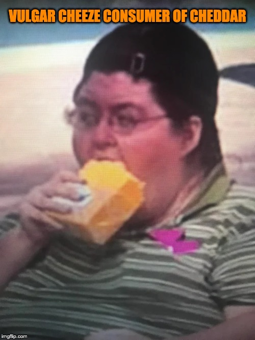 VULGAR CHEEZE CONSUMER OF CHEDDAR | image tagged in vulgar cheeze | made w/ Imgflip meme maker