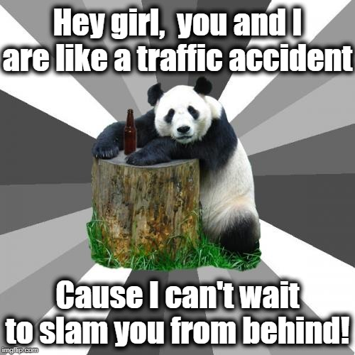 Pickup Line Panda Meme | Hey girl,  you and I are like a traffic accident Cause I can't wait to slam you from behind! | image tagged in memes,pickup line panda | made w/ Imgflip meme maker