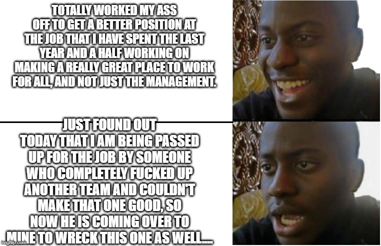 Disappointed Black Guy | TOTALLY WORKED MY ASS OFF TO GET A BETTER POSITION AT THE JOB THAT I HAVE SPENT THE LAST YEAR AND A HALF WORKING ON MAKING A REALLY GREAT PL | image tagged in disappointed black guy | made w/ Imgflip meme maker