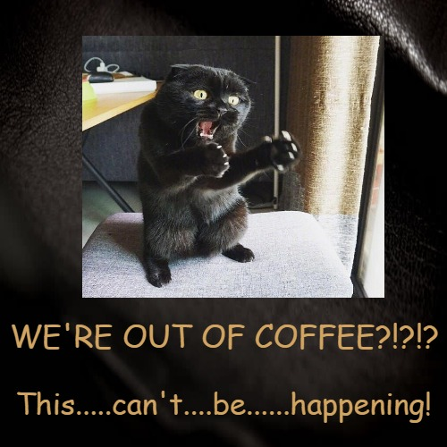 Out Of Coffee! | WE'RE OUT OF COFFEE?!?!? | This.....can't....be......happening! | image tagged in funny,demotivationals,cats,funny cats,coffee addict | made w/ Imgflip demotivational maker