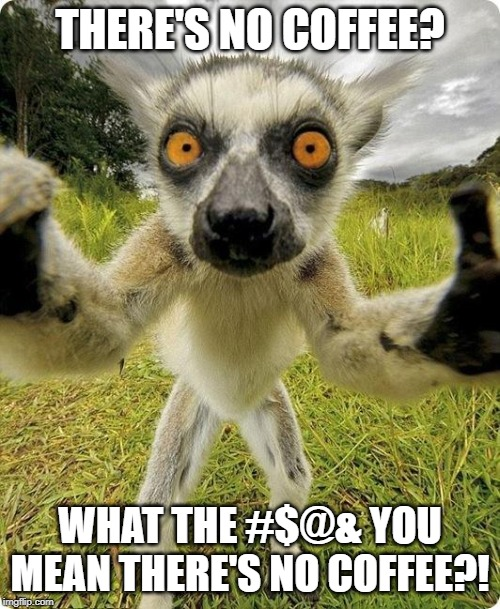 Lemur in ur face | THERE'S NO COFFEE? WHAT THE #$@& YOU MEAN THERE'S NO COFFEE?! | image tagged in coffee,no coffee,coffee break,need caffeine | made w/ Imgflip meme maker