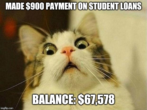 Scared Cat Meme | MADE $900 PAYMENT ON STUDENT LOANS BALANCE: $67,578 | image tagged in memes,scared cat,student loans,debt,expensive | made w/ Imgflip meme maker