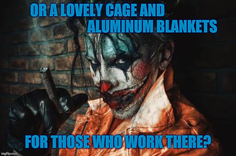 Evil Cl S/S | OR A LOVELY CAGE AND                                         ALUMINUM BLANKETS FOR THOSE WHO WORK THERE? | image tagged in evil cl s/s | made w/ Imgflip meme maker