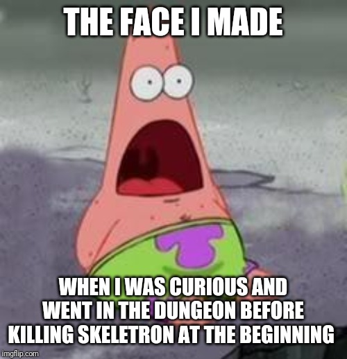 Suprised Patrick |  THE FACE I MADE; WHEN I WAS CURIOUS AND WENT IN THE DUNGEON BEFORE KILLING SKELETRON AT THE BEGINNING | image tagged in suprised patrick | made w/ Imgflip meme maker