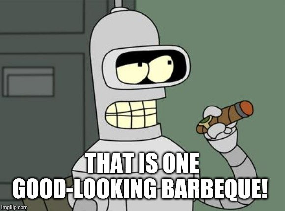 bender is smart | THAT IS ONE GOOD-LOOKING BARBEQUE! | image tagged in bender is smart | made w/ Imgflip meme maker