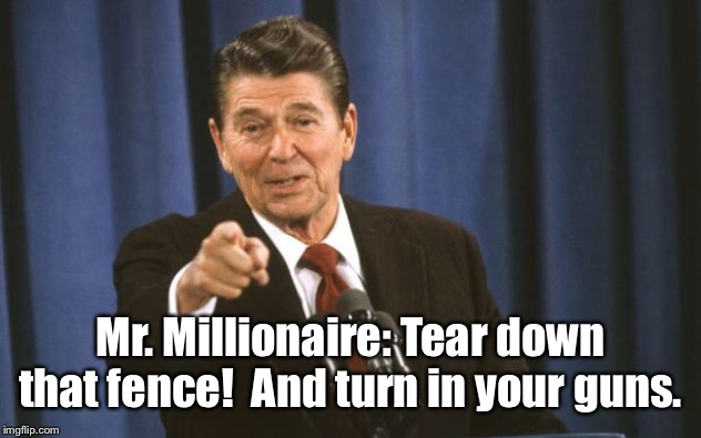 Ronald Reagan | Mr. Millionaire: Tear down that fence!  And turn in your guns. | image tagged in ronald reagan | made w/ Imgflip meme maker