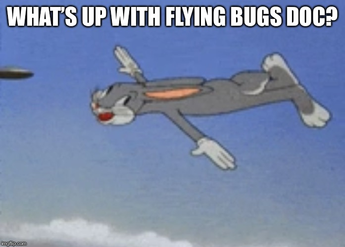 WHAT'S UP WITH FLYING BUGS DOC? | made w/ Imgflip meme maker