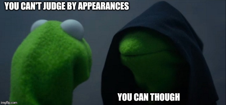 Evil Kermit | YOU CAN'T JUDGE BY APPEARANCES YOU CAN THOUGH | image tagged in memes,evil kermit | made w/ Imgflip meme maker