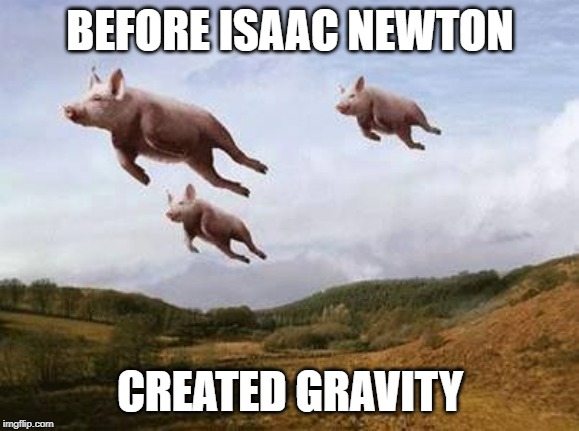 Pigs Fly | BEFORE ISAAC NEWTON CREATED GRAVITY | image tagged in pigs fly | made w/ Imgflip meme maker