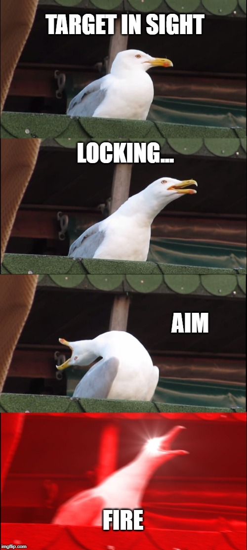 Inhaling Seagull | TARGET IN SIGHT LOCKING... AIM FIRE | image tagged in memes,inhaling seagull | made w/ Imgflip meme maker