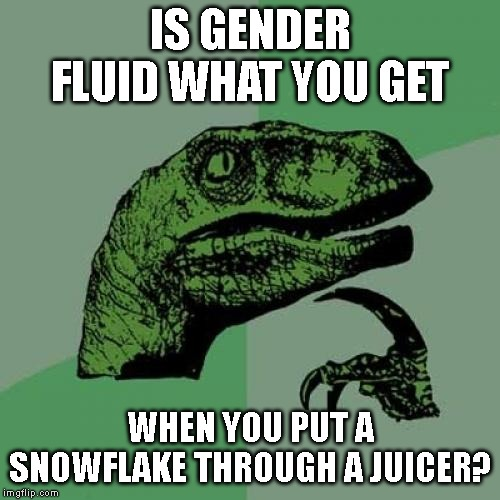 Tastes like chicken...shit! | IS GENDER FLUID WHAT YOU GET WHEN YOU PUT A SNOWFLAKE THROUGH A JUICER? | image tagged in memes,philosoraptor,gender,snowflake,juicer | made w/ Imgflip meme maker
