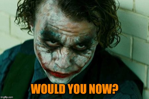 The Joker Really | WOULD YOU NOW? | image tagged in the joker really | made w/ Imgflip meme maker