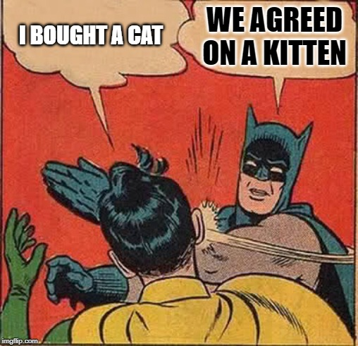 Batman Slapping Robin Meme | I BOUGHT A CAT WE AGREED ON A KITTEN | image tagged in memes,batman slapping robin | made w/ Imgflip meme maker