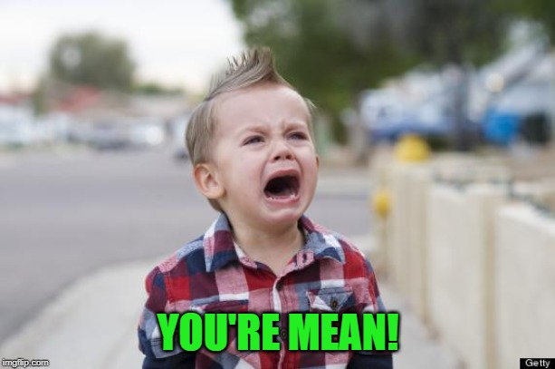 Crying kid | YOU'RE MEAN! | image tagged in crying kid | made w/ Imgflip meme maker