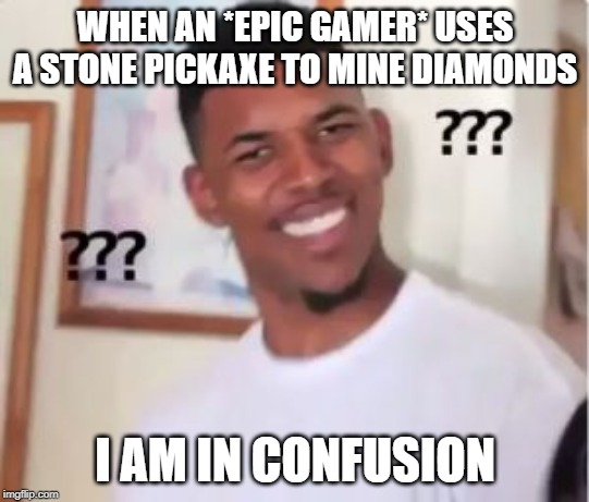Nick Young | WHEN AN *EPIC GAMER* USES A STONE PICKAXE TO MINE DIAMONDS I AM IN CONFUSION | image tagged in nick young | made w/ Imgflip meme maker
