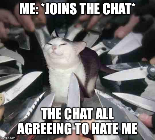 Knife Cat | ME: *JOINS THE CHAT* THE CHAT ALL AGREEING TO HATE ME | image tagged in knife cat | made w/ Imgflip meme maker