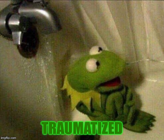 kermit crying terrified in shower | TRAUMATIZED | image tagged in kermit crying terrified in shower | made w/ Imgflip meme maker