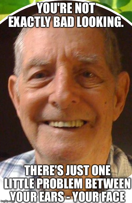 Old man from the Internet | YOU'RE NOT EXACTLY BAD LOOKING. THERE'S JUST ONE LITTLE PROBLEM BETWEEN YOUR EARS - YOUR FACE | image tagged in old man from the internet | made w/ Imgflip meme maker