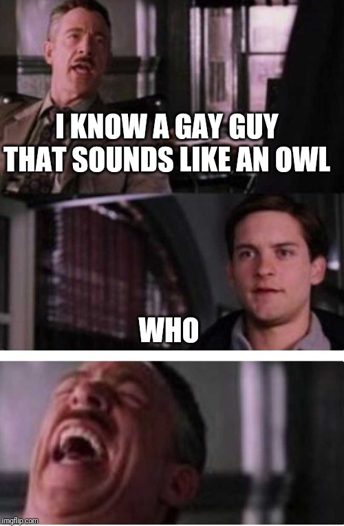 Toby cry | I KNOW A GAY GUY THAT SOUNDS LIKE AN OWL WHO | image tagged in toby cry | made w/ Imgflip meme maker