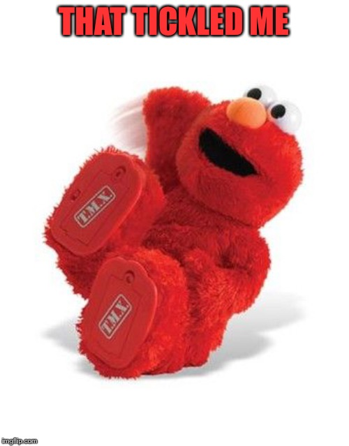 Elmo Laughing | THAT TICKLED ME | image tagged in elmo laughing | made w/ Imgflip meme maker
